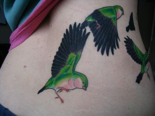 Bird Tattoo Meaning Tattoosphoto