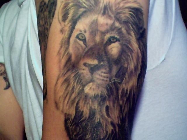 Lion tattoo shoulder girl - photo#13